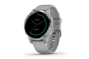 Garmin Vivoactive 4S Music Powder Gray/Silver Smartwatch