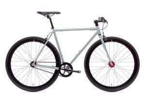 State Bicycle Pigeon