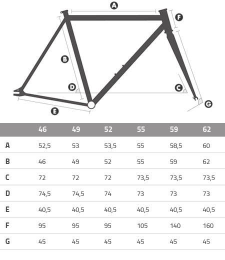 State Fixie