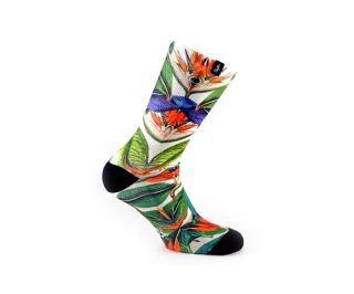Calcetines Pacifico Greenleaf